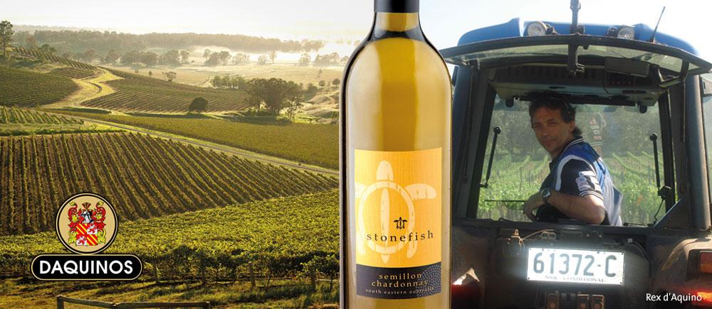 D'Aquino Winery